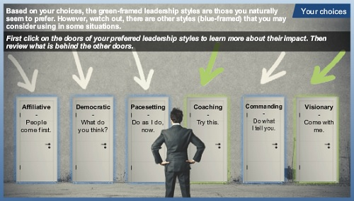 Self-awareness: Leadership styles